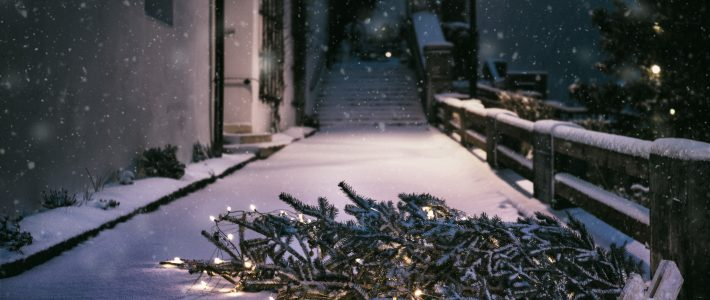 WeihnachtsBAUMabholservice