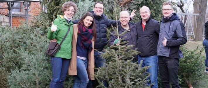 60 Weihnachtsbäume wurden eingesammelt!